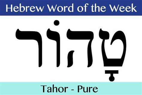 hebrew word for comfort 230 best images about hebrew quotes on pinterest