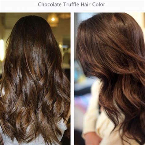 truffle color chocolate truffle hair colour autumn winter 2014 colour