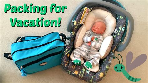 diy reborn baby car seat packing for vacation with reborn baby eli
