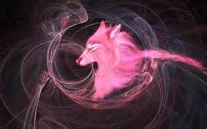 pink fox wallpaper wallpapersafari