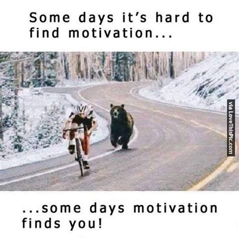 Find Funny Memes - some days motivation finds you pictures photos and