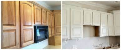 Best Brand Of Kitchen Cabinets 6 creative best paint for kitchen cabinets lotusep com