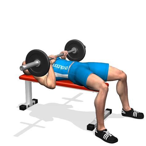 muscle groups used in bench press 25 best ideas about bench press on pinterest bench press workout bench press