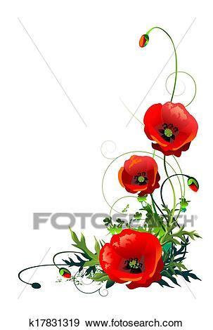 fiori illustrazioni archivio illustrazioni papavero fiori isolato