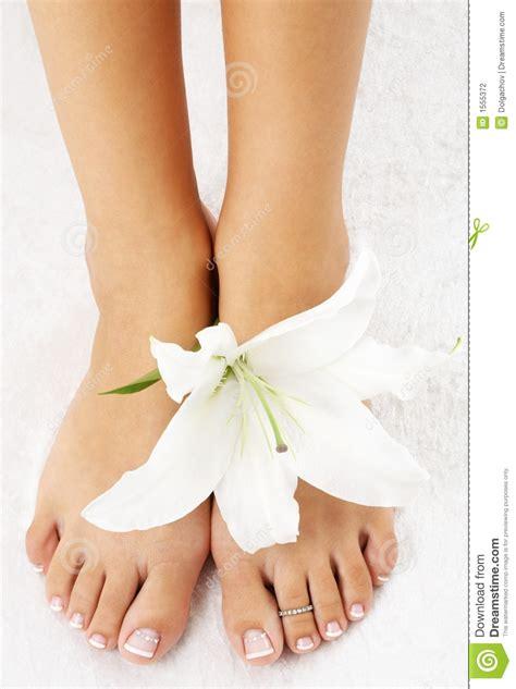 madonna di ciglio piedi con il giglio di madonna fotografia stock immagine