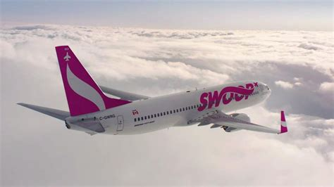 westjet s low cost carrier swoop to take flight as battle for price sensitive passengers heats