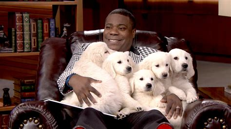 jimmy fallon tracy pup quiz with tracy the tonight show