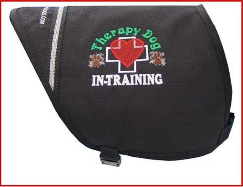 therapy in embroidered vest working service
