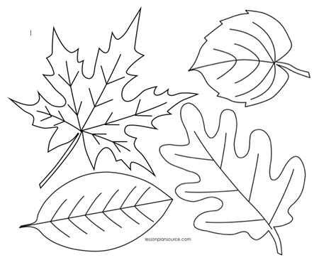 autumn leaves coloring page 12794 bestofcoloring com