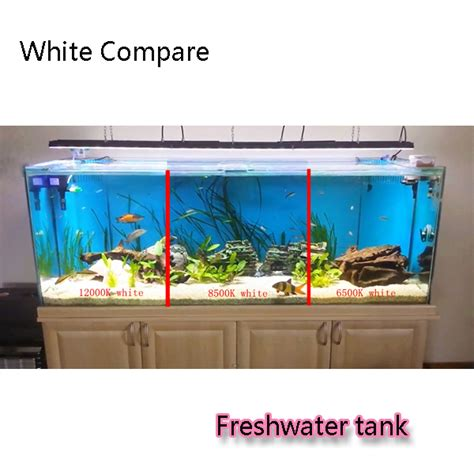 10 gallon planted tank led lighting led for 75 gallon tank the planted tank forum
