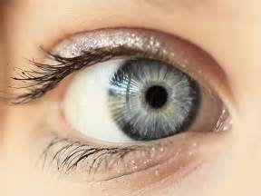 eye color common eye colours of human beings