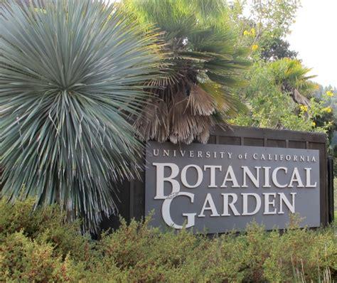 Uc Berkeley Botanical Garden Stupid Garden Plants Uc Botanical Gardens
