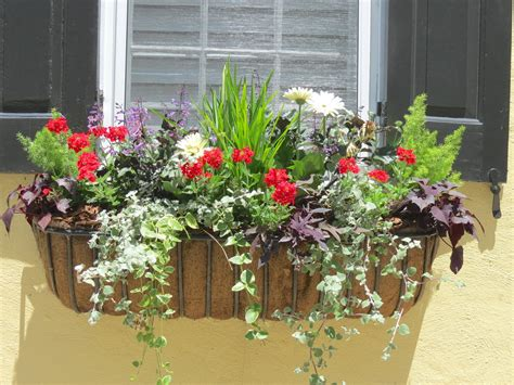 window box ideas for shade jll design window box ideas more garden inspirations