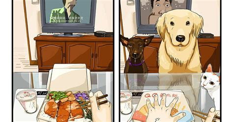 after you get your puppy what is like before and after you get a in 9 comics
