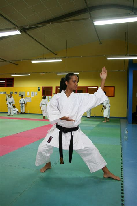list of chinese martial arts wikipedia the free encyclopedia history of chinese martial arts