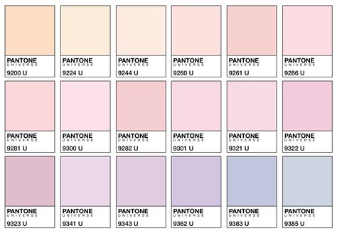 pastel color codes colours of lilac blush and pastels