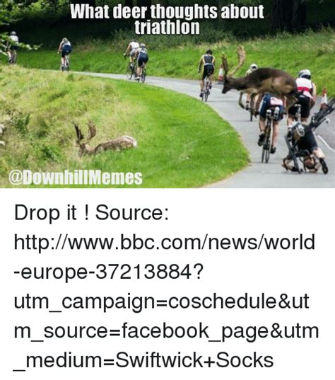 Triathlon Meme - triathlon memes related keywords triathlon memes long