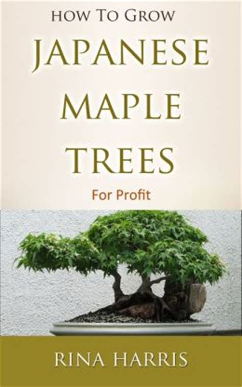 how to grow japanese maple trees for profit all