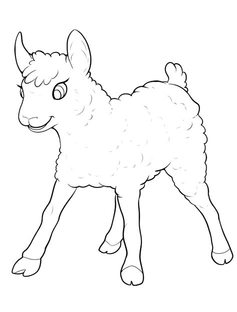 small sheep coloring page coloring page little lamb have fun