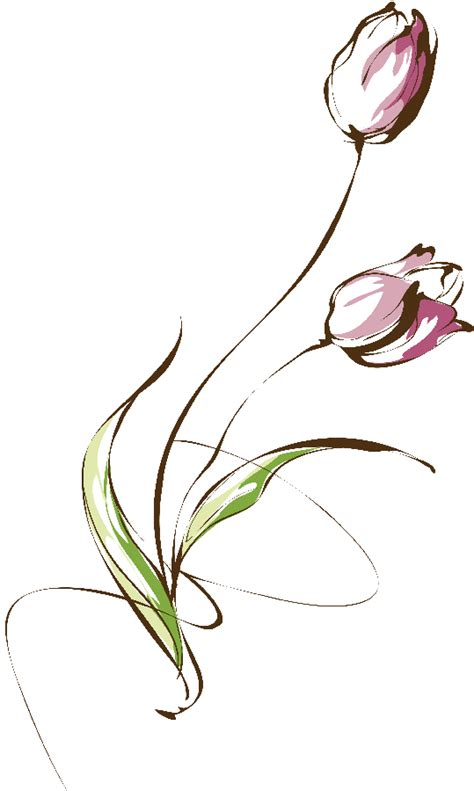 flores ilustraciones en png para artesan 237 a y dise 241 os primavera
