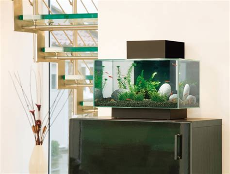 modern aquarium kitchen with a strong visual impact by fluval edge aquarium set black fluval aquariums fluval