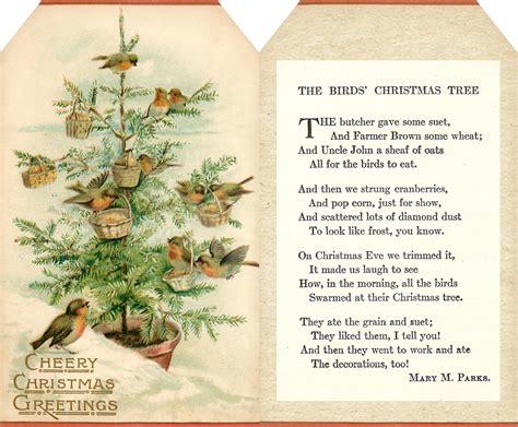 christmas tree poem lilac lavender the birds tree