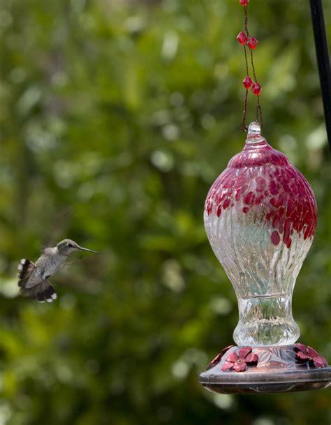 Beautiful Bird Feeders Amazing Beautiful Hummingbird Feeder 3 Beautiful Glass