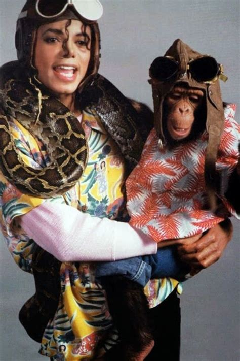 Mj Monkey Set by Michael Jackson And Animals Mj Michael