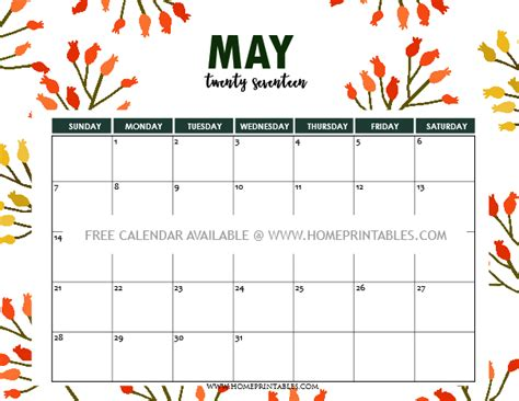 free printable may 2017 calendar 6 cool and chic designs