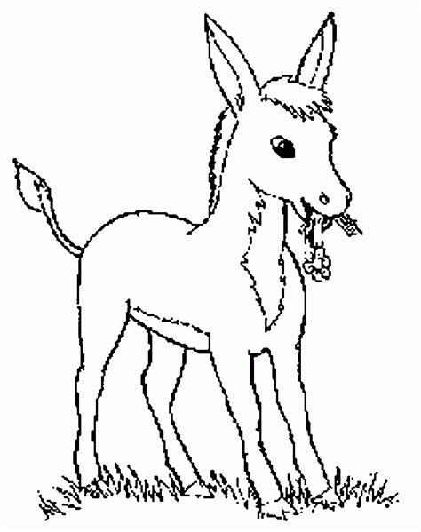 imagenes para colorear burro jumento para colorir az dibujos para colorear