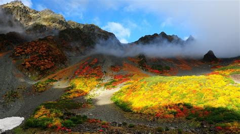 nature landscape trees forest fall colorful mountain