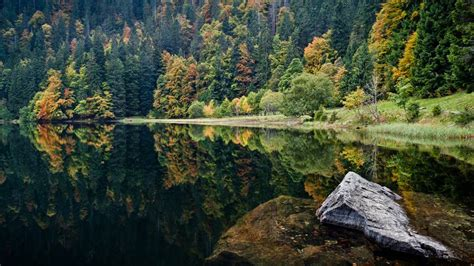 the black forest germany black forest mountain germany xcitefun net