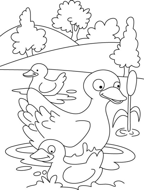 Make Way For Ducklings Coloring Coloring Pages