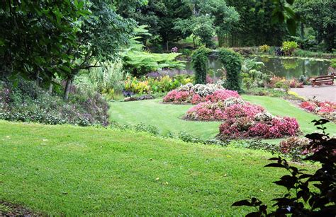 Maleny Botanic Garden 3 Hinterland Botanic Gardens Brisbane