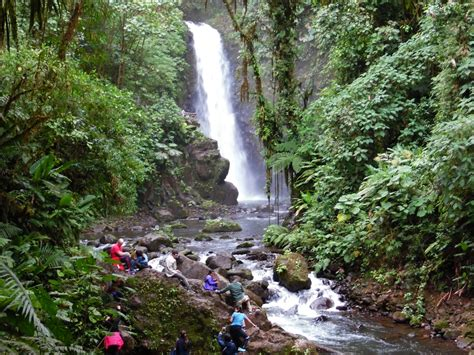 Waterfall Gardens Costa Rica by Wildlife And Waterfalls At La Paz Waterfall Gardens Costa