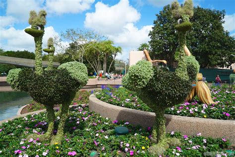 2015 Epcot International Flower And Garden Festival International Flower And Garden Festival