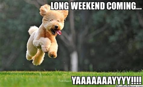 Long Weekend Meme - long weekend quotes like success
