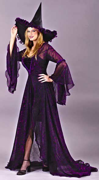 shimmering rose witch costumejpg  witches