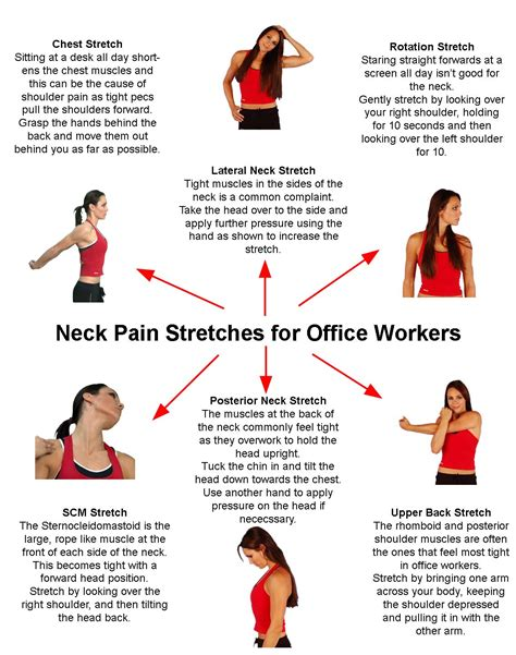neck stretches for office workers much of my