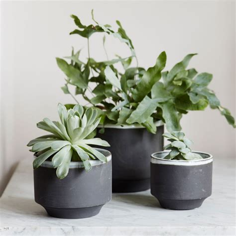 Scandanvian Design by Small Pot Plants The Benefits Of Container Gardening The