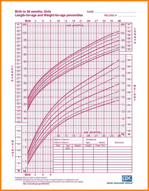 yorkie growth chart in kg teacup yorkie growth chart image collections chart exle ideas