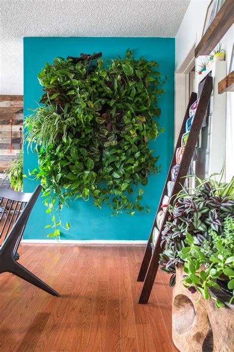 wall garden indoor best 25 indoor vertical gardens ideas on wall