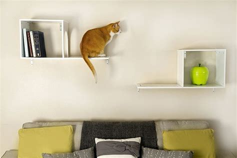 cat wall furniture help your cat reach a new level stylish climbing shelves