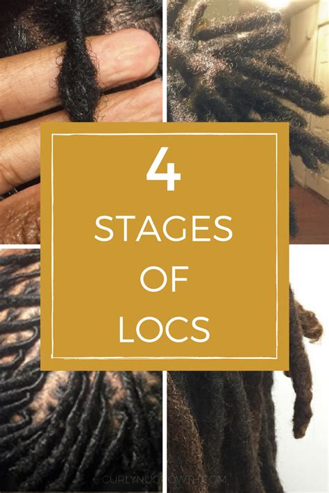 pics of locs growth stages pics of locs growth stages stages of locs how locs evolve