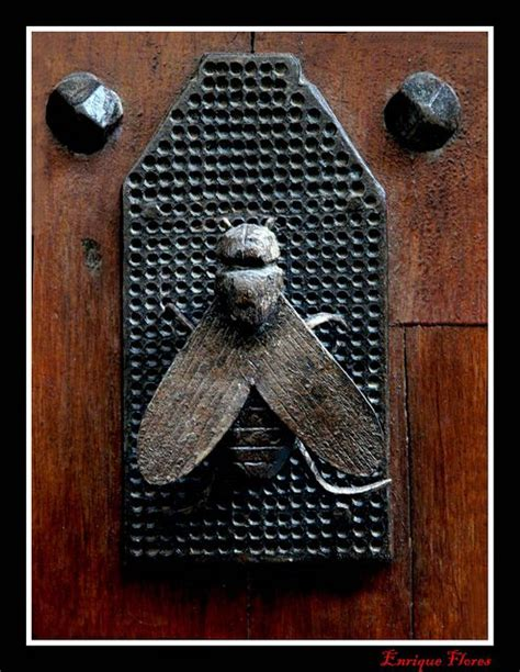 Bee Door Knocker by Bee Door Knocker Door Details And Knockers Doors Beehive And House