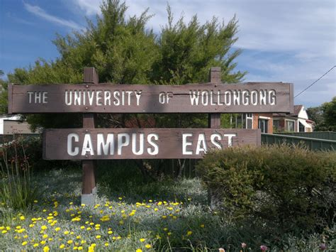 Of Wollongong Mba Entry Requirements by Boende P 229 Of Wollongong Blueberry College