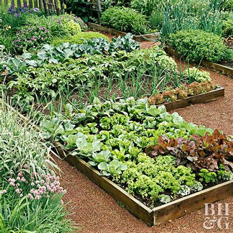 Planning Your First Vegetable Garden Popular Garden Vegetables