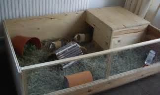 Rabbit Hutches Uk Caring For Your Guinea Pig In Winter Preloved Uk
