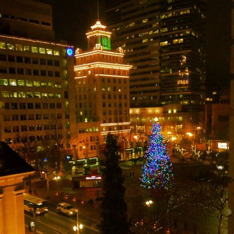 portland christmas holiday tree arrives this friday