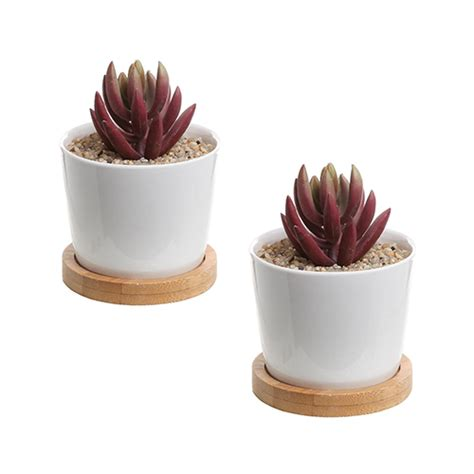 white succulent planter modern white succulent planter pots love the edit